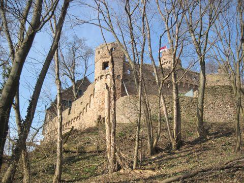 Alemannenweg – Kuralpe – Schloss Auerbach