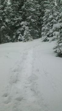 Schneeschuhwanderung – Zum Crep de Sela und zurück