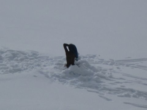 Winterwanderung – Am Latemar
