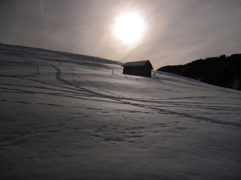 Schneeschuhwanderung – Durch das Tschamintal