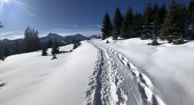 Zugspitzblick-Runde – Berg – Lohmoos – Zöblen